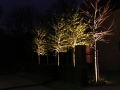 straatverlichting 2